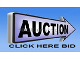 Bid and Win an auction - Global Auto Auctions
